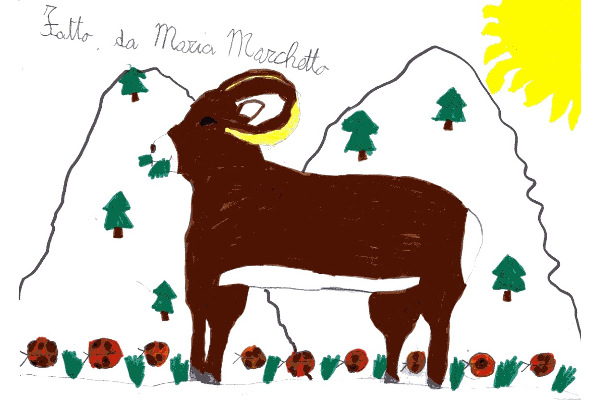 Maria Marchetto - 8 anni