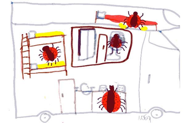 Noemi Storti - 8 anni