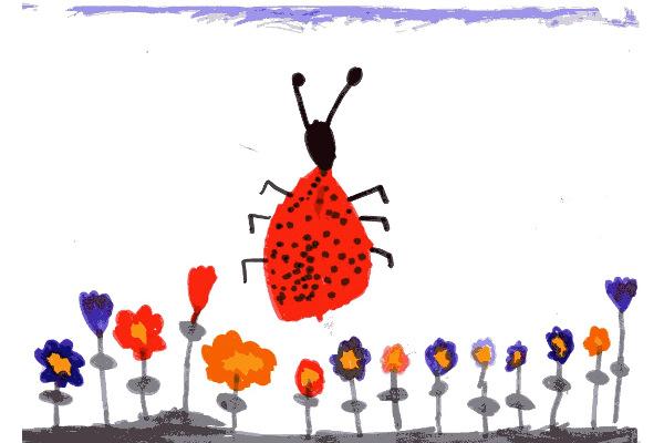 Alessandro Chiappin - 6 anni